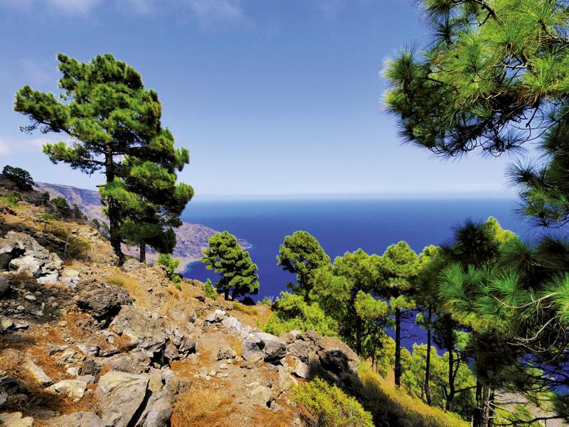 Küstenlandschaft auf El Hierro - plantours Kreuzfahrten