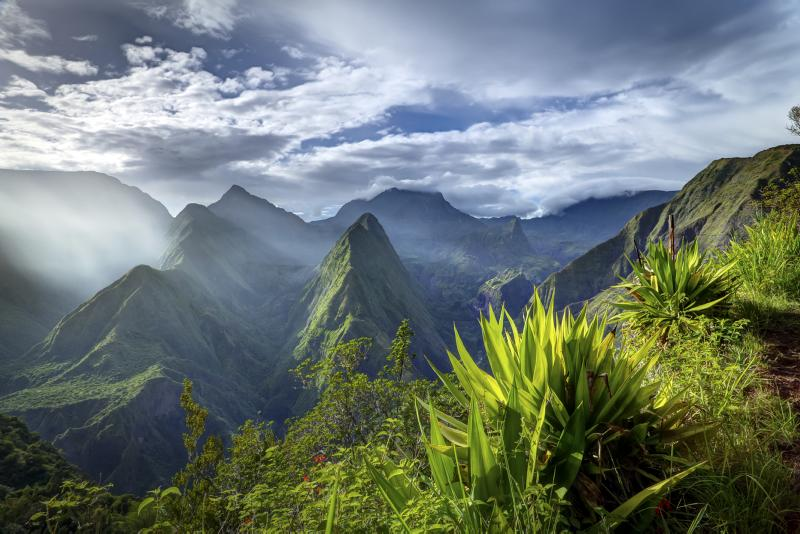 La Réunion © IRT_frog_974_photographies