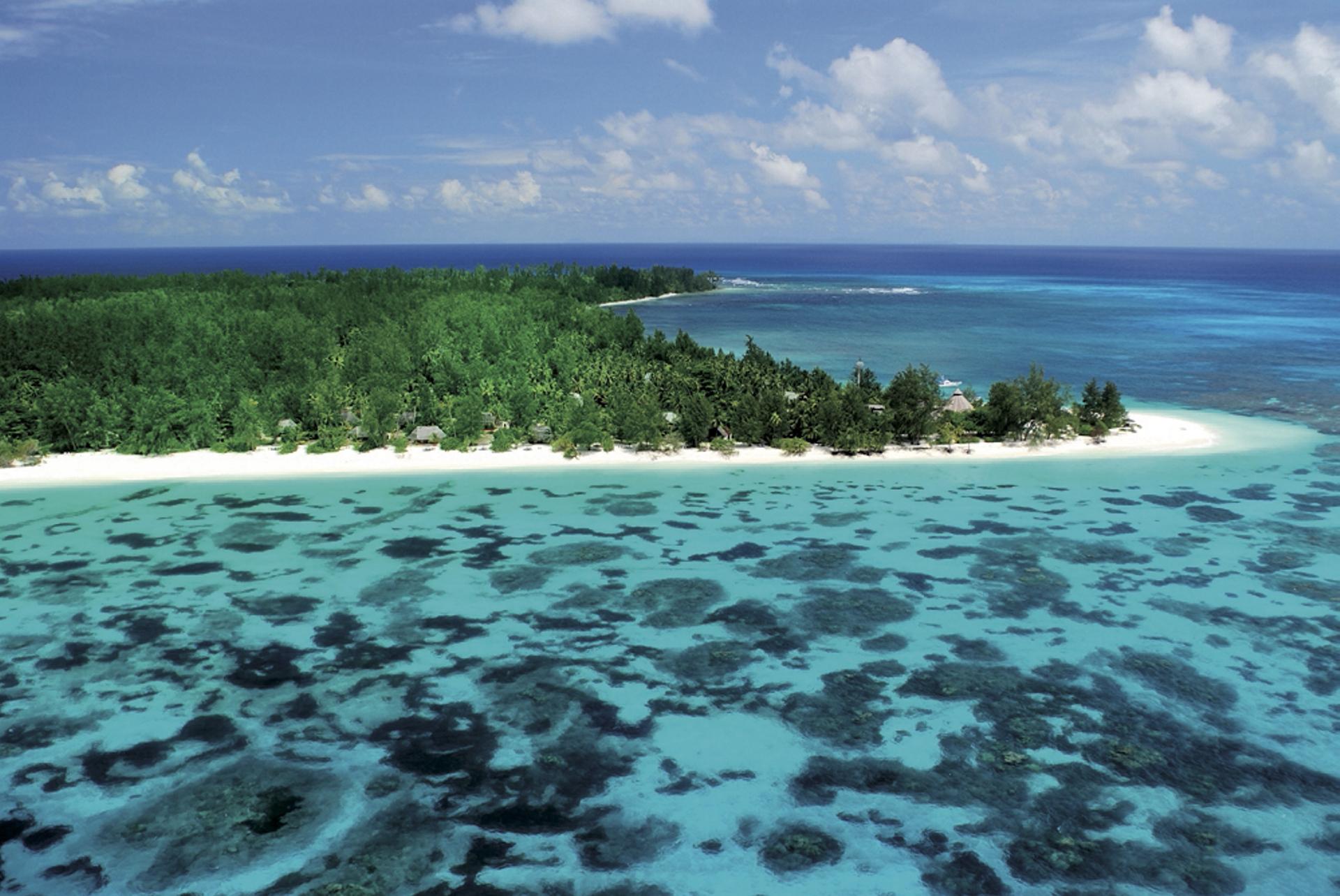Umgeben von Korallen
