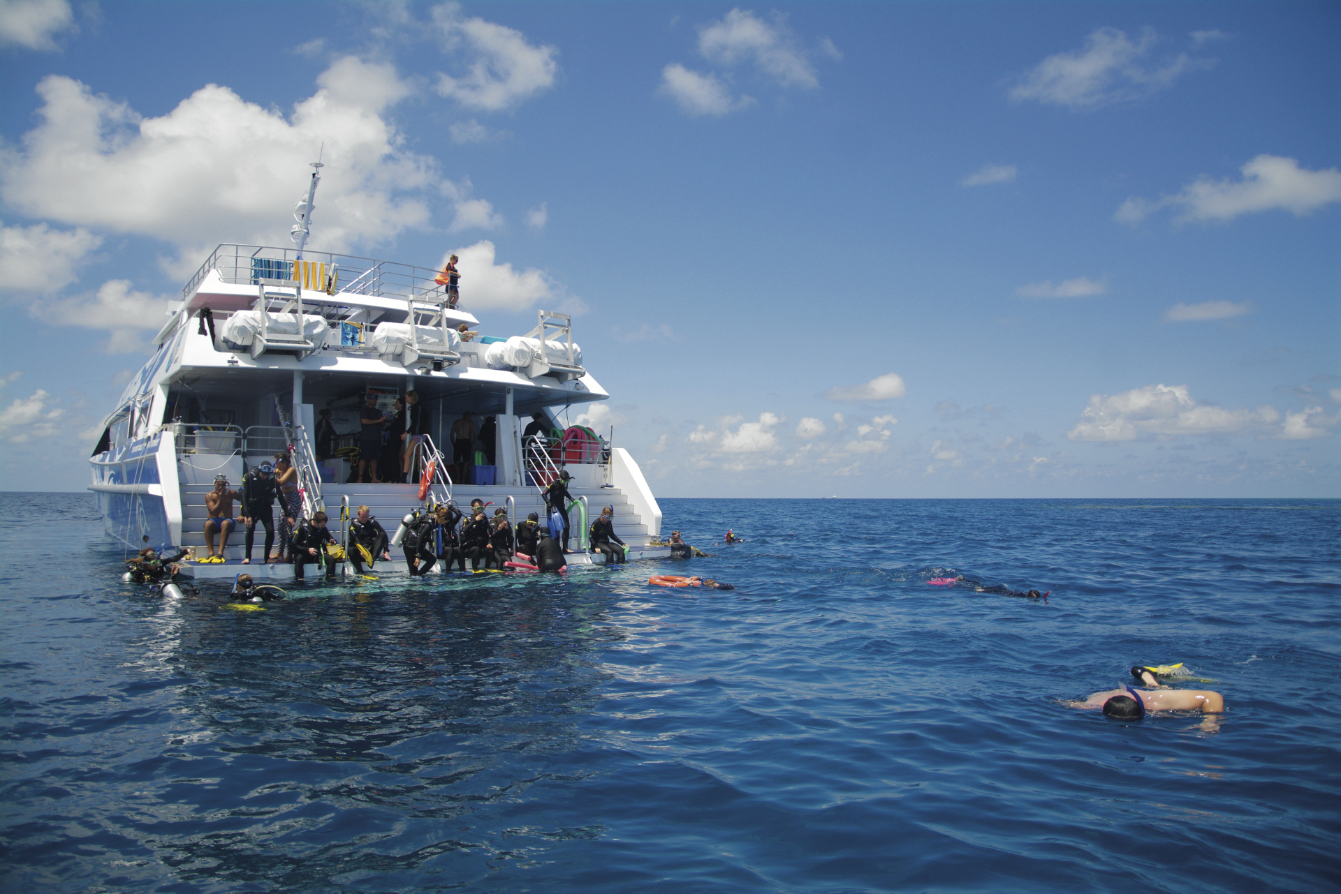 Reef Quest im Riff