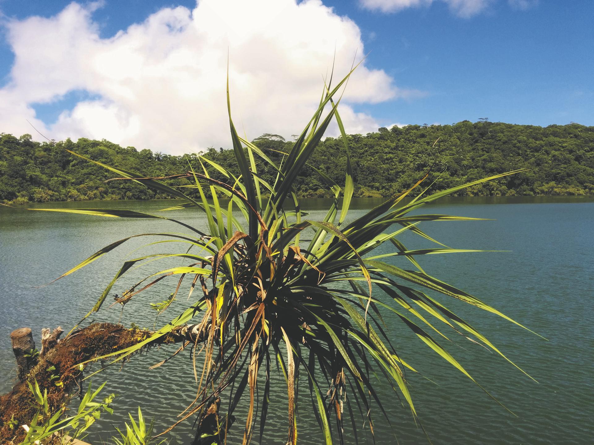 Lake Lanotoo