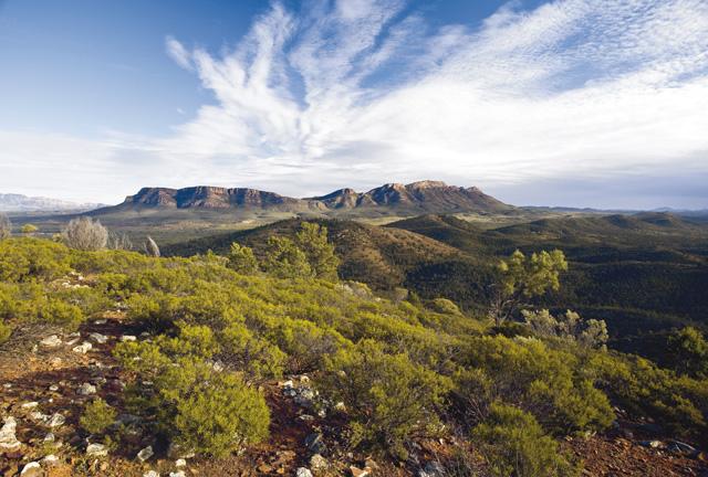 Blick in die Flinders Ranges © BILL BACHMAN
