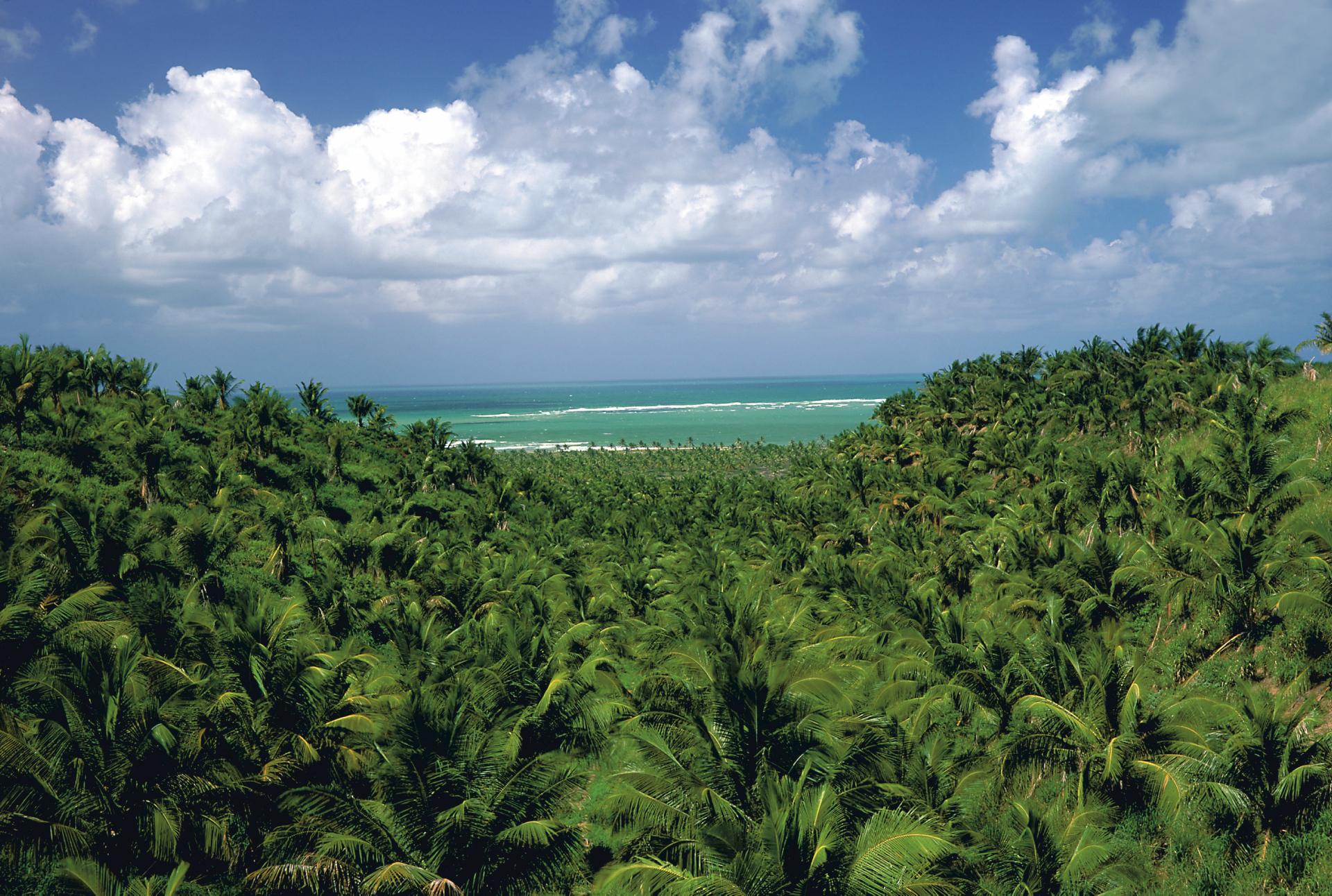 Nordosten Landschaft