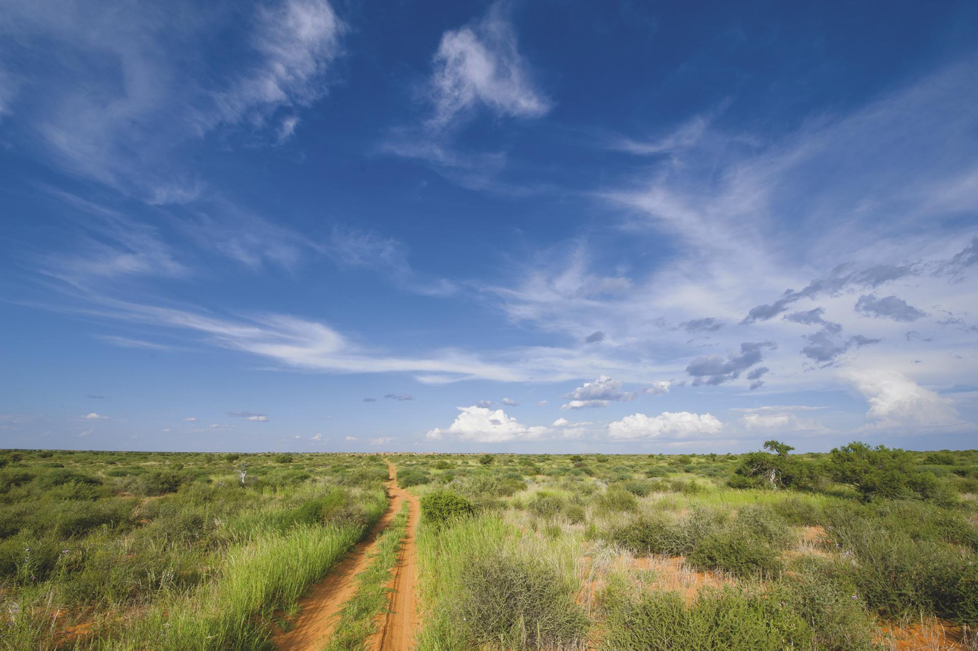 Der Kgalagadi Transfrontier NP