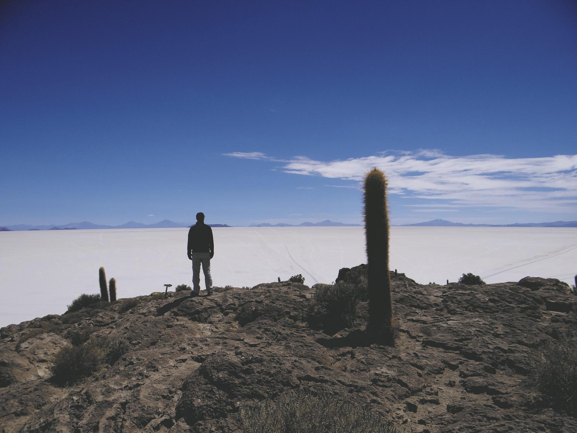 Blick von der Insel Incahuasi auf den Salar