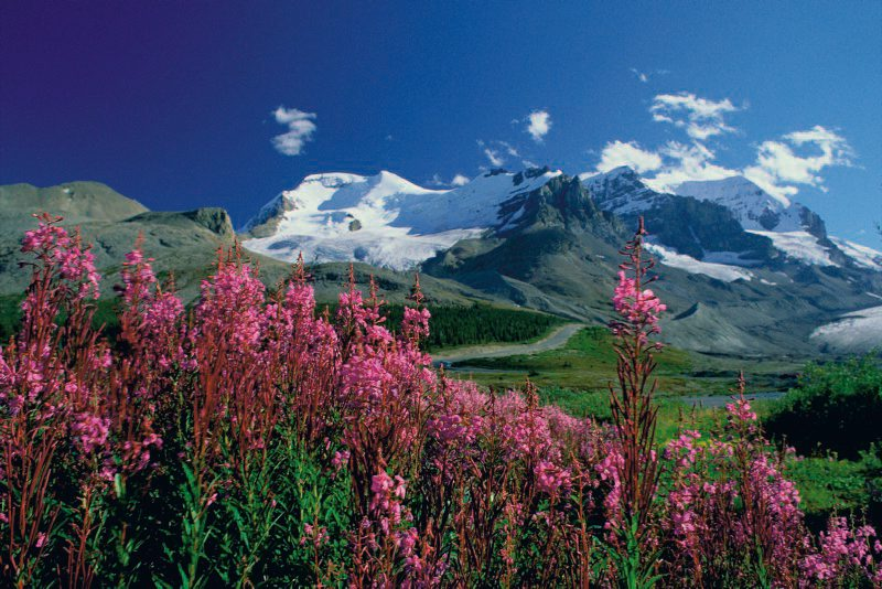 In den Rocky Mountains