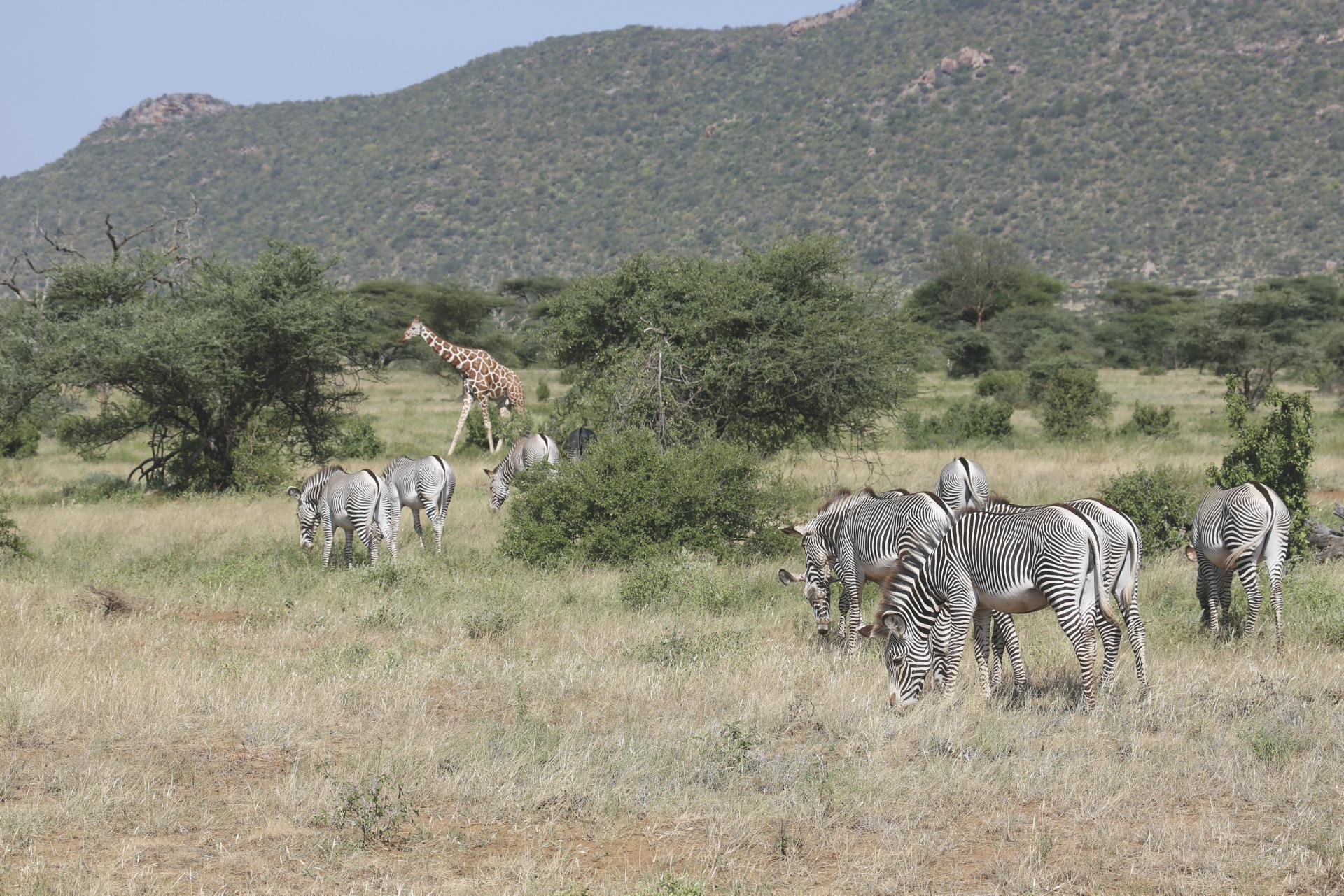©Thomas Kimmel; Begegnungen in Kenia