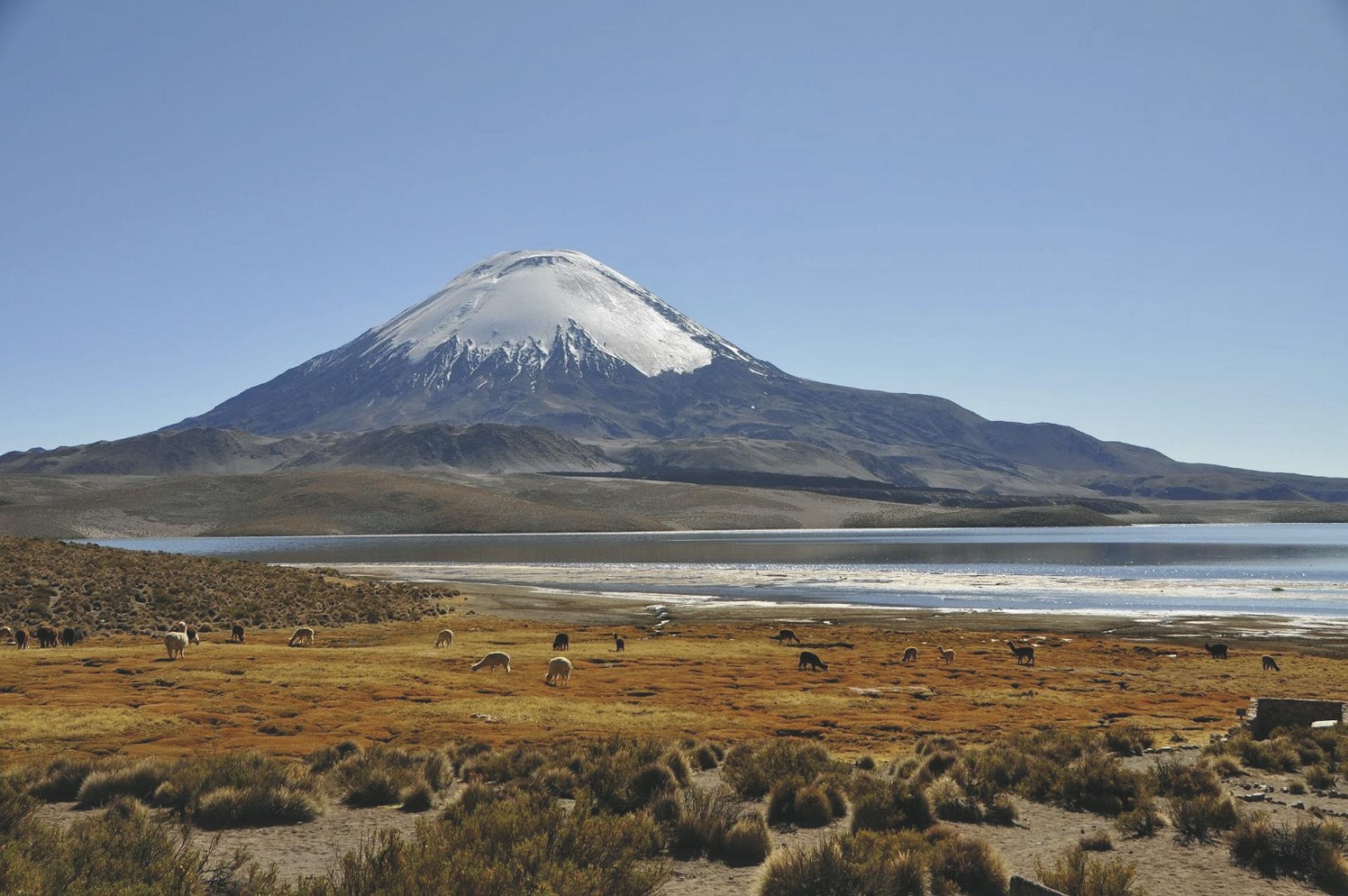 Lago Chungara und Vulkan Parinacota im Lauca Nationalpark