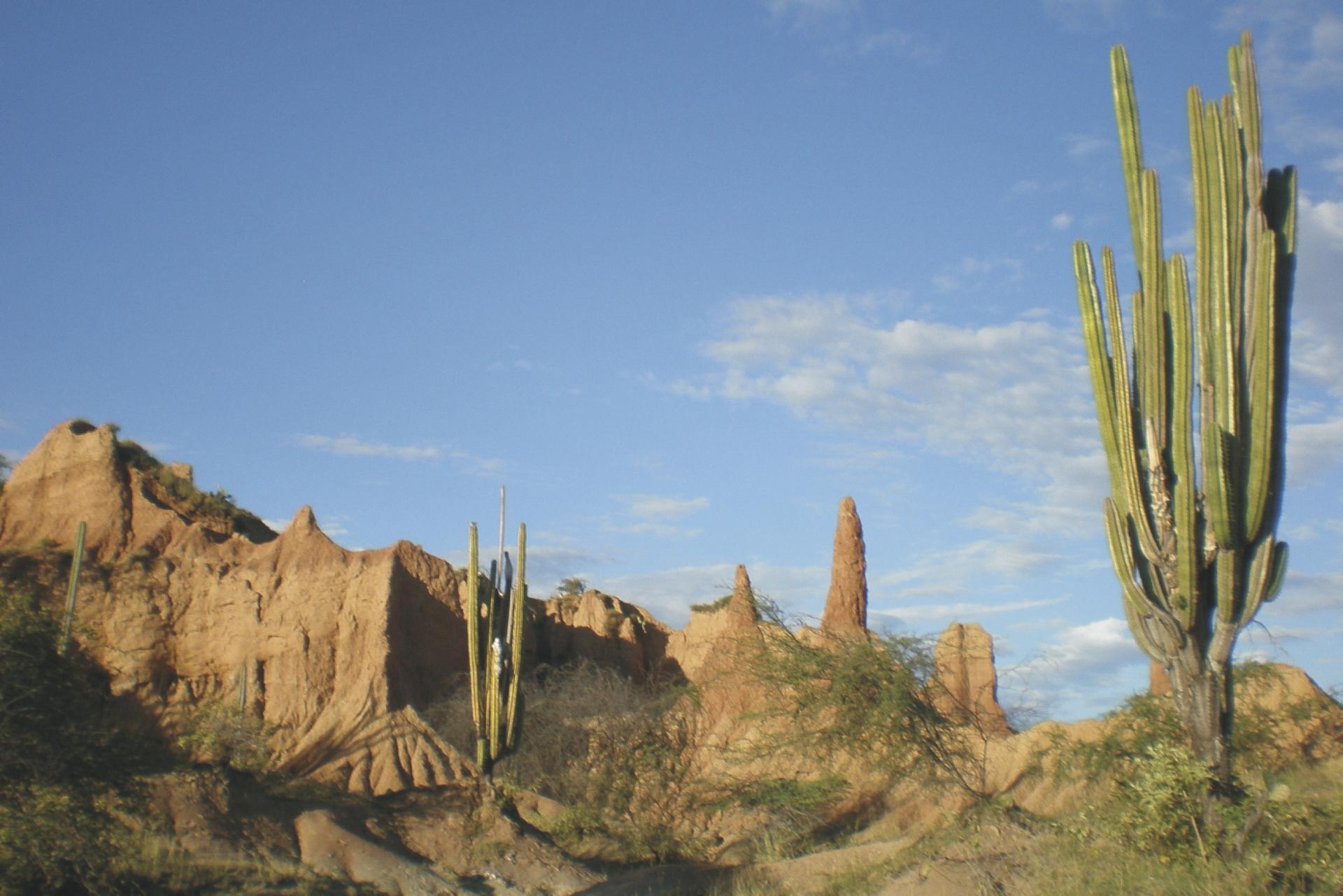 Tatacoa Wüste ©South American Tours