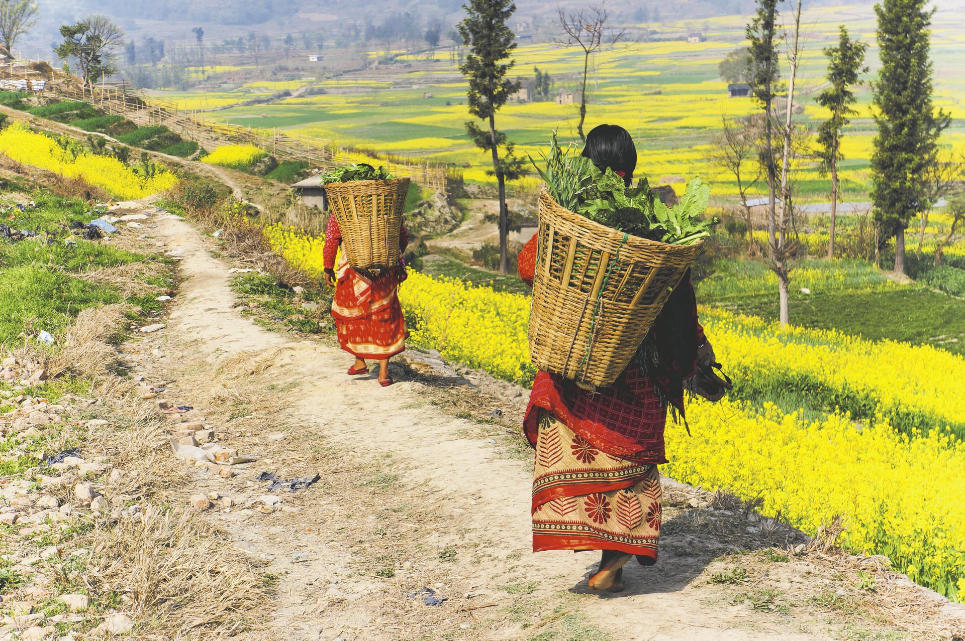 Land und Leute in Nepal