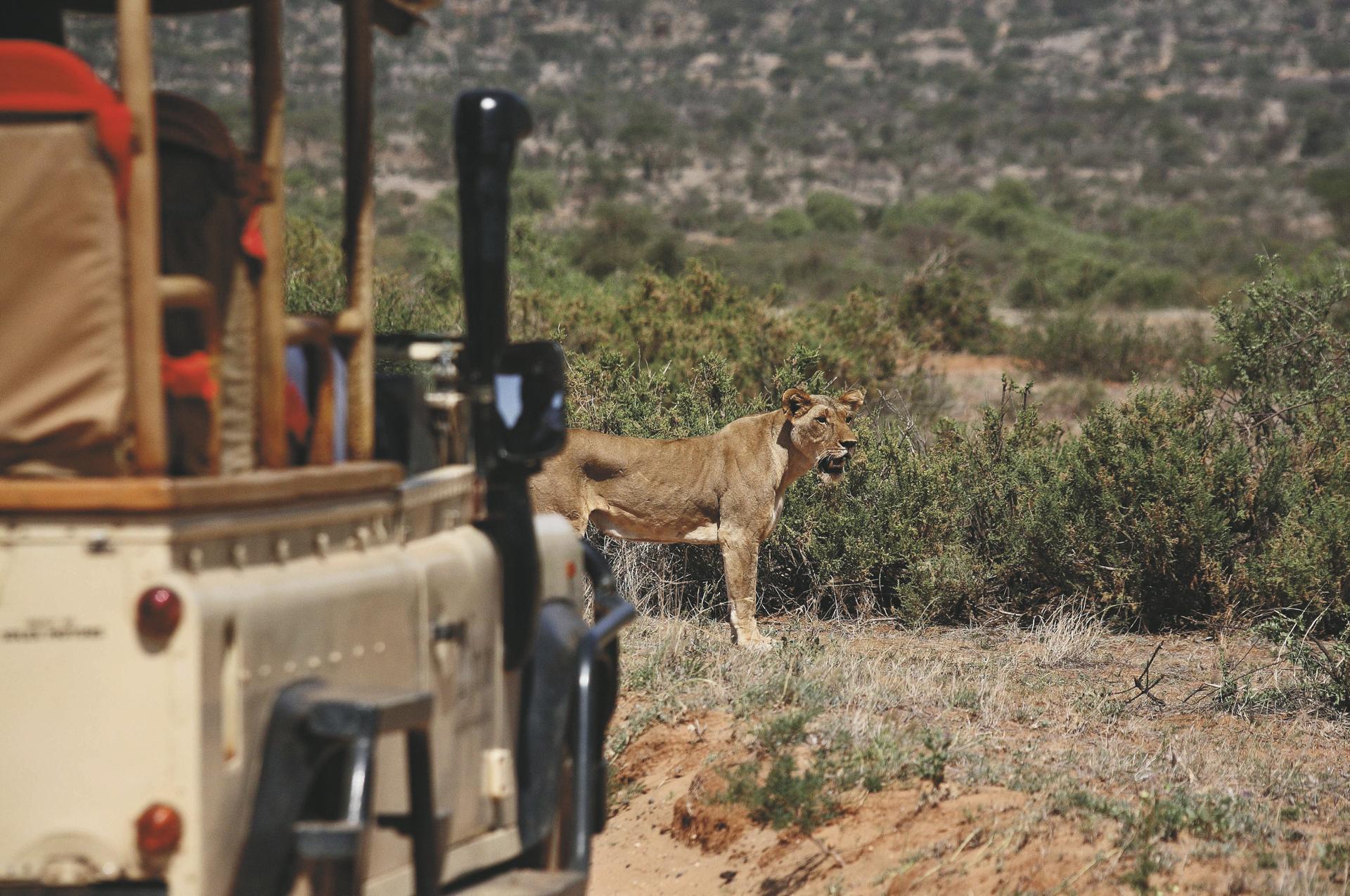 Im Samburu