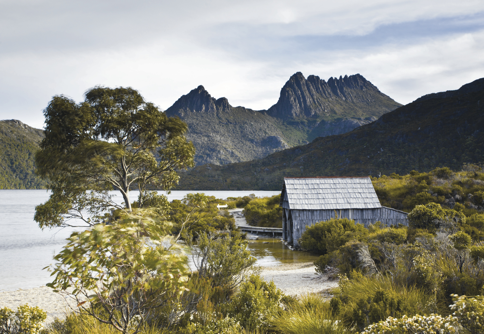 Lake Dove, Cradle Mountain NP