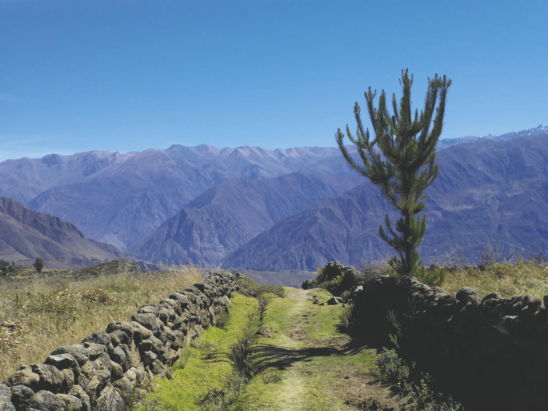 Blick ins Colca-Tal