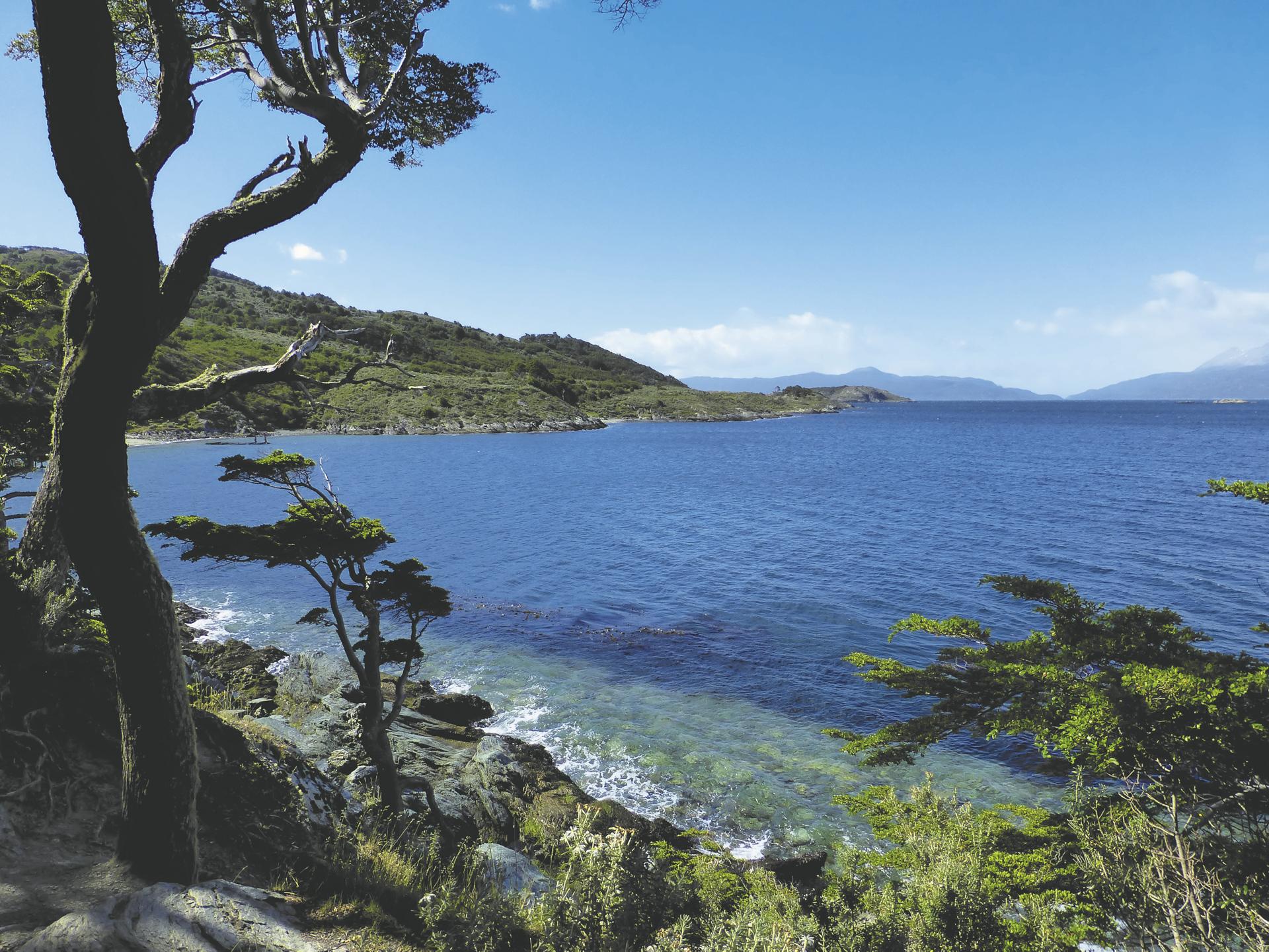 im Nationalpark Tierra del Fuego