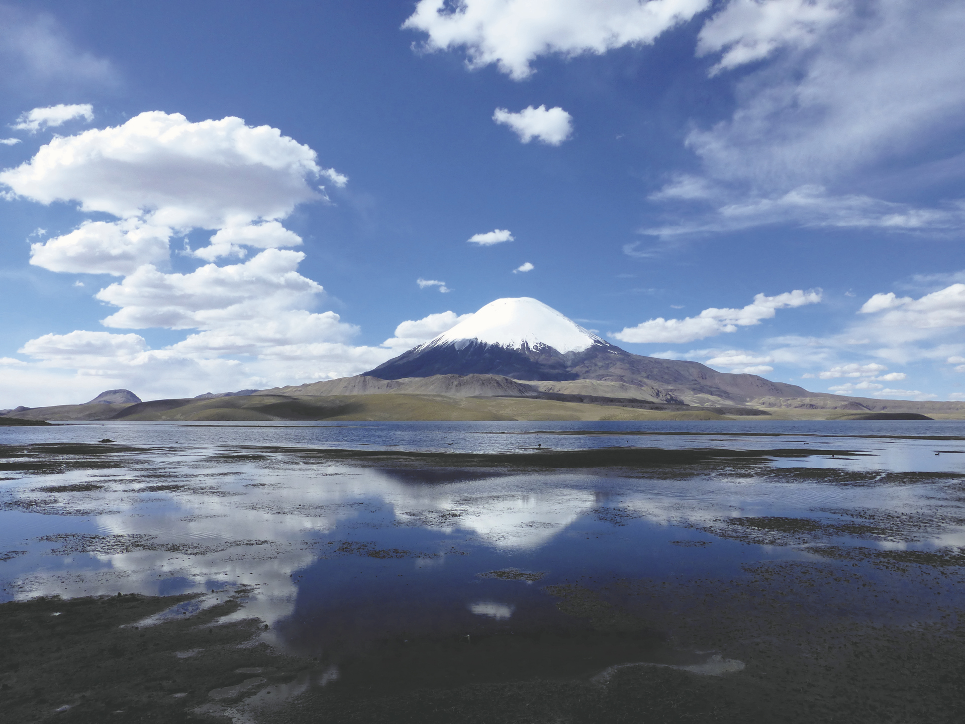 Vulkan Parinacota im Lauca Nationalpark