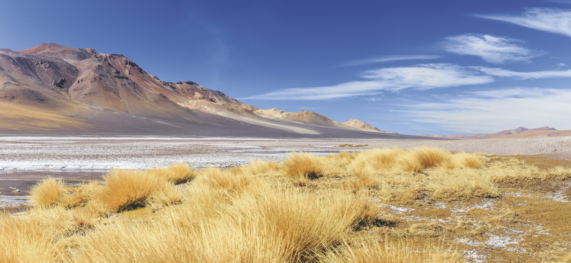 Salar de Huasco in Nordchile