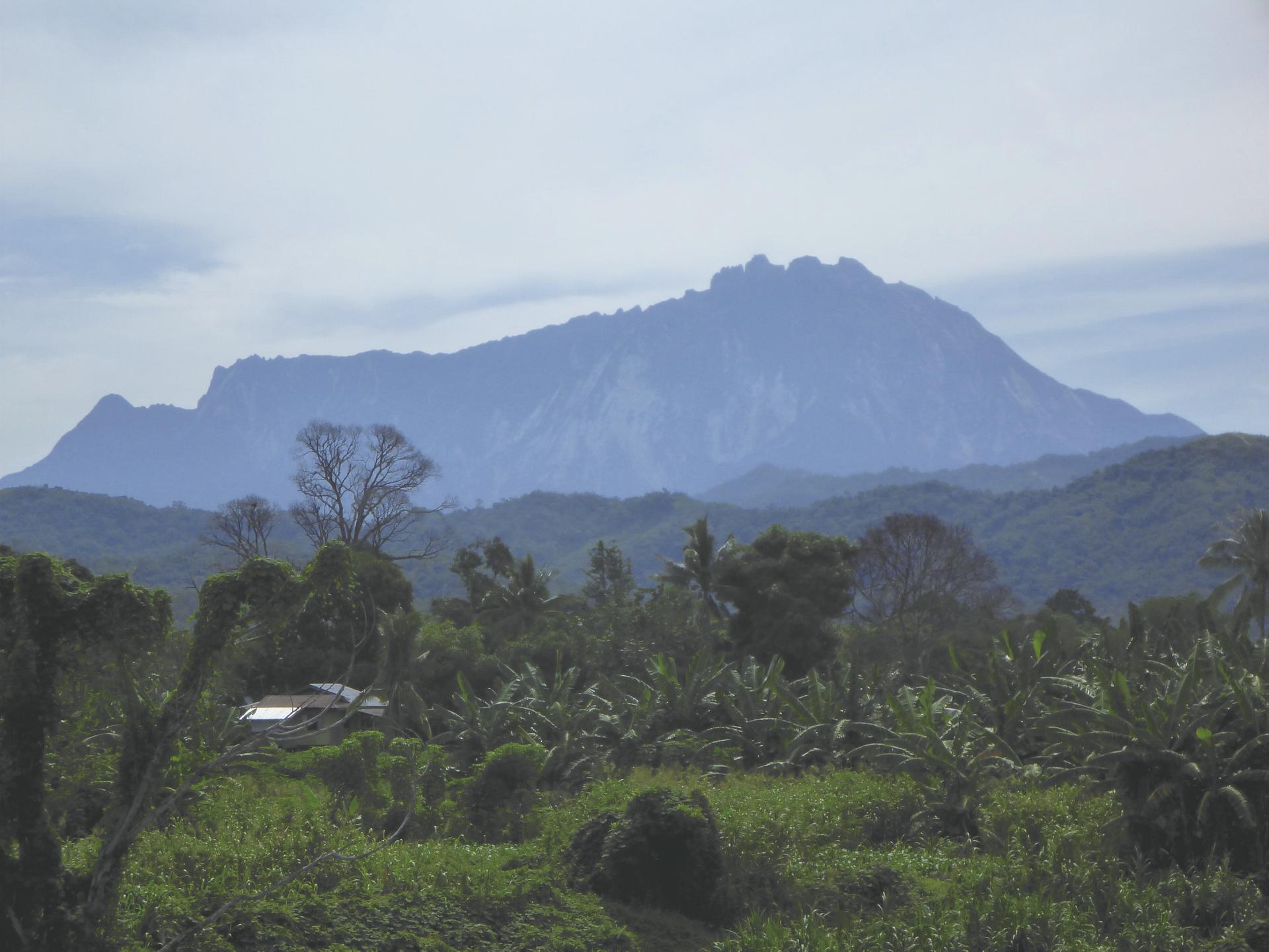 Blick auf den Mt. Kinabalu