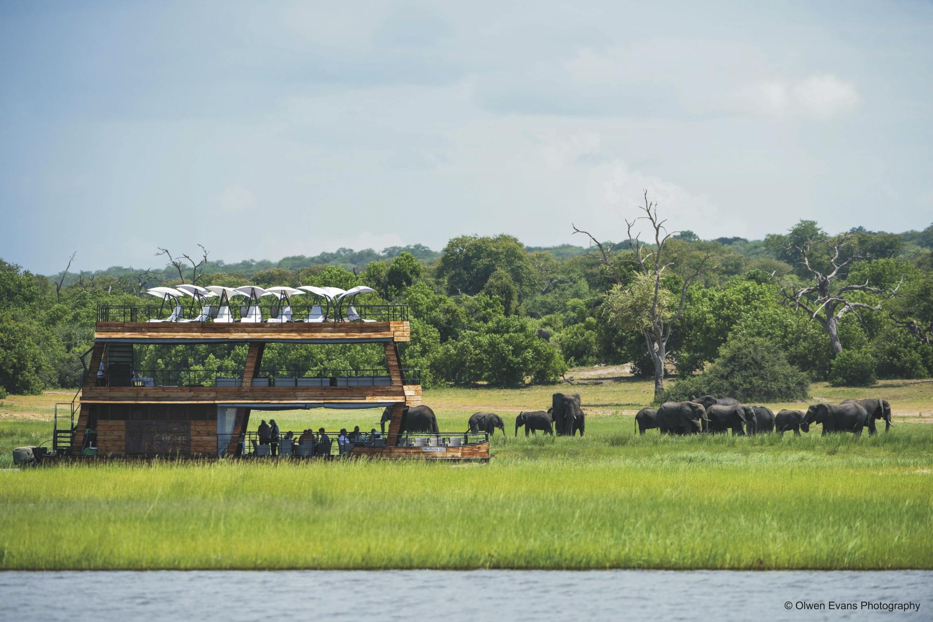 Bootsfahrt auf dem Chobe River, © Olwen Evans Photography